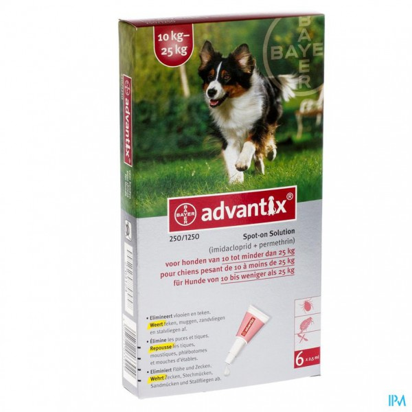 ADVANTIX 250/1250 HONDEN       10<25KG FL  6X2,5ML